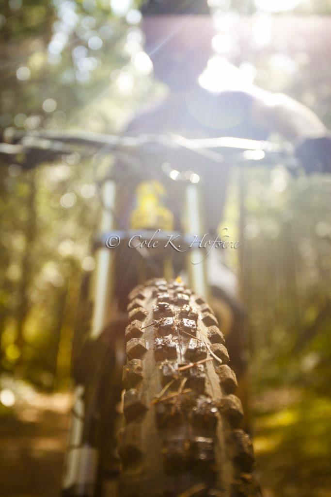 Cole Hofstra, kijker photography, sports, victoria, news, action, bmx, bike, fun, skate park (1 of 1)-5