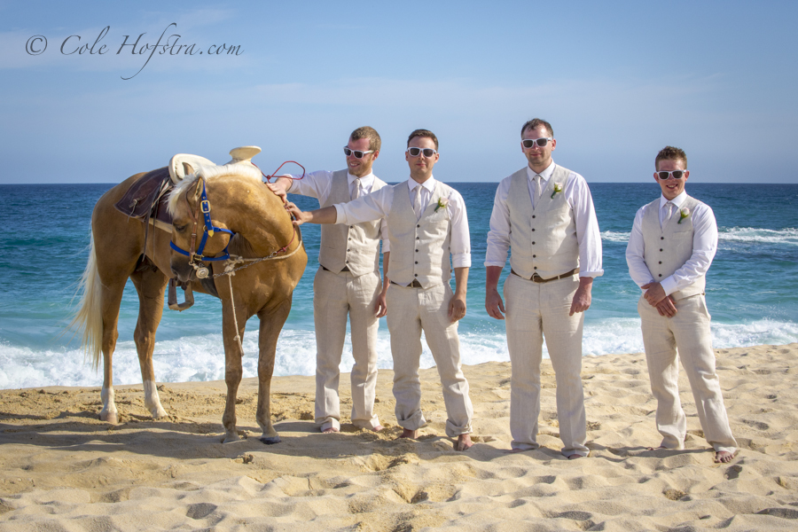 Wedding in Mexico, Cabo san Lucas, Destination Wedding Cole Hofstra