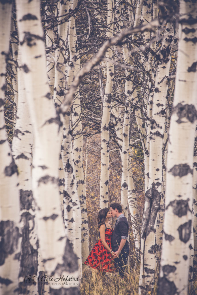calgary wedding photographer, cole hofstra, cole hofstra photography, calgary, yyc, engagement session