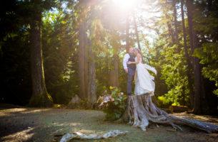 Parksville Wedding