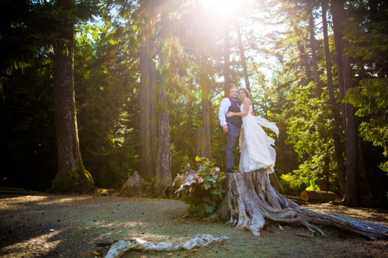 parksville wedding