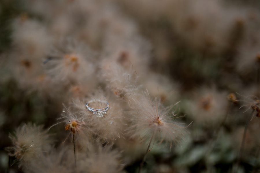 detail shots of engagement rings, wedding rings in canmore, mountain wedding rings
