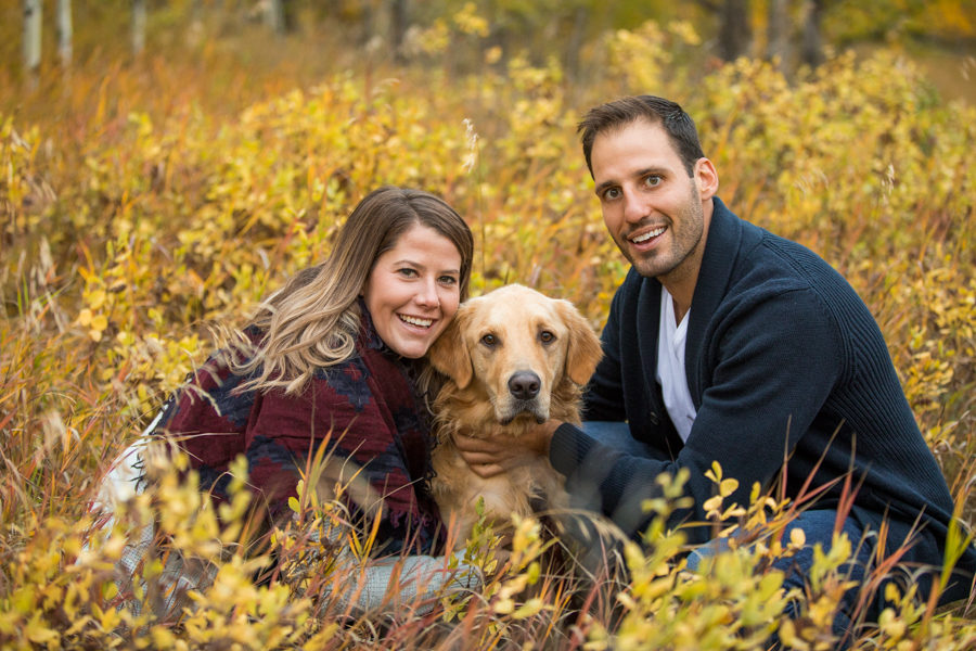dog in your engagement session