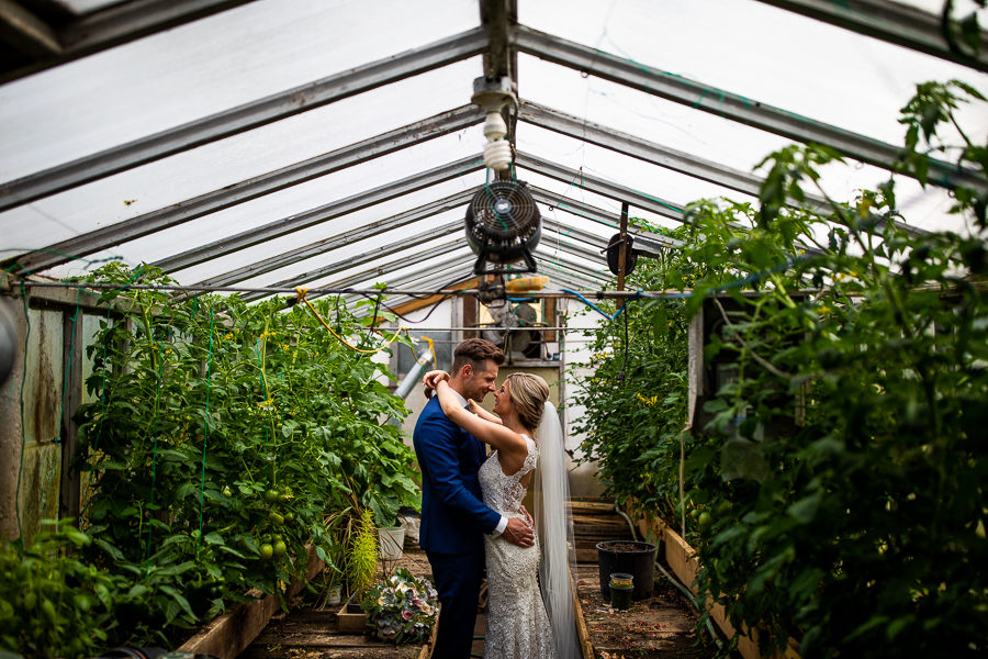 wedding portraits in a green house
