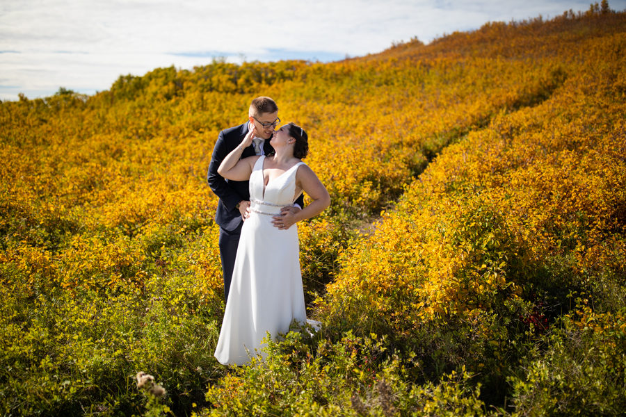 Nose Hill wedding pictures