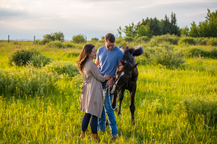 couple having engagement pictures with there horse