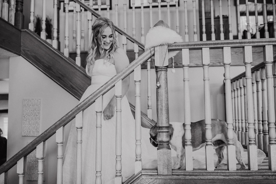 bride getting ready with her puppy
