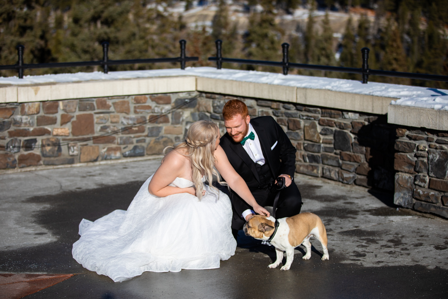 First look Fairmont Banff Springs wedding with puppy