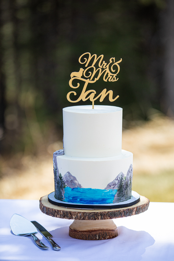 Cake at Silvertip elopements