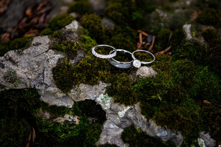 wedding rings sitting in moss