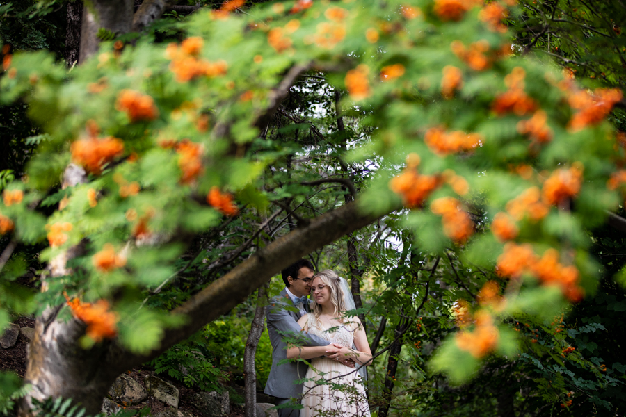 couple standing under a berry tree