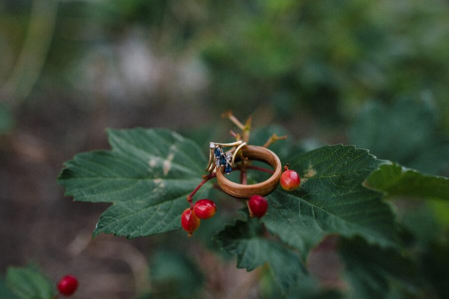 rings on a leaf