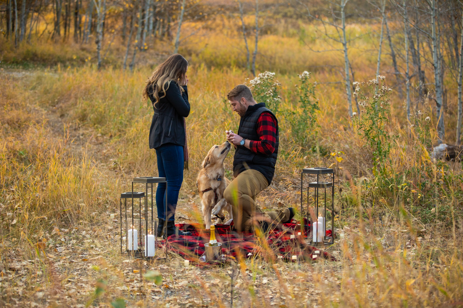 fish creek proposal, Perfect Proposal Ideas Calgary