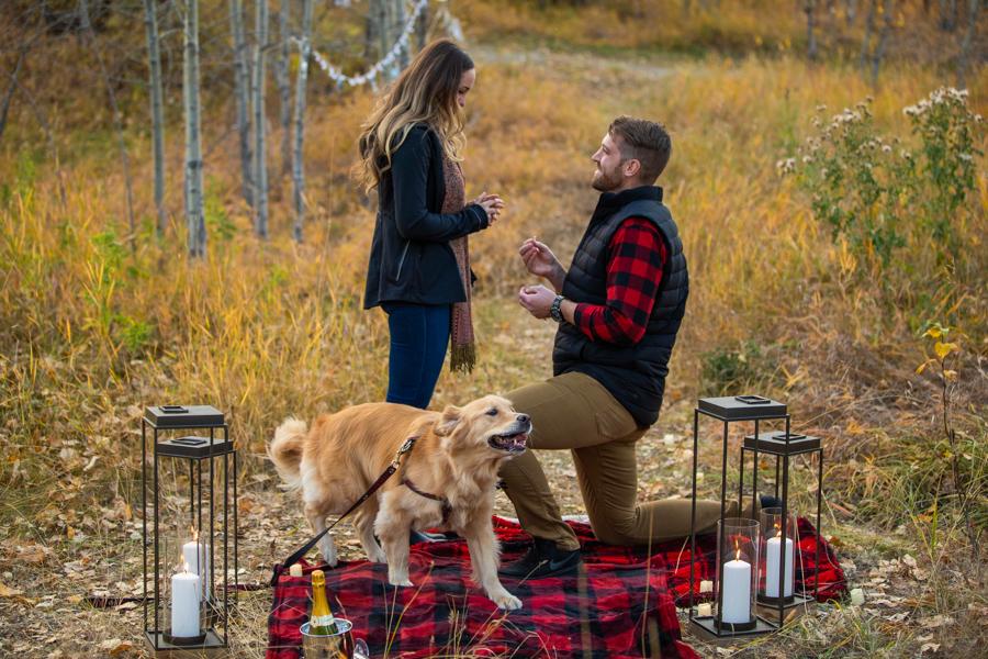 Perfect Proposal Ideas Calgary