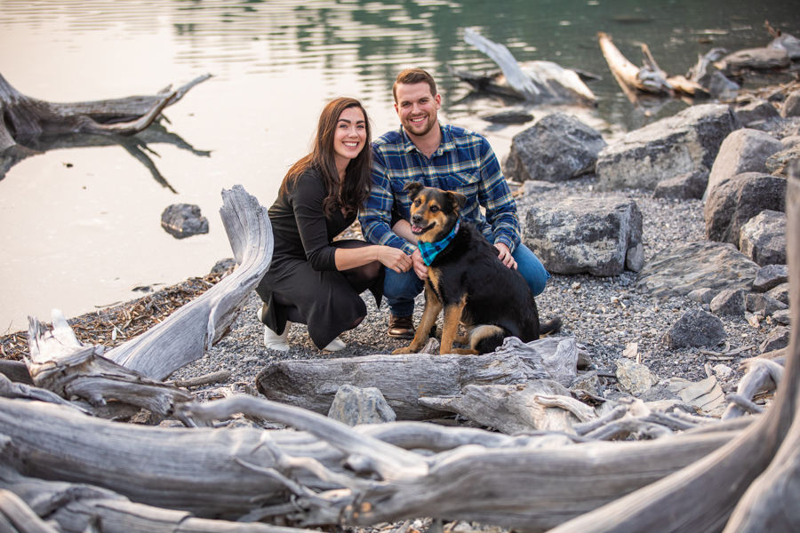 dogs at your engagement session